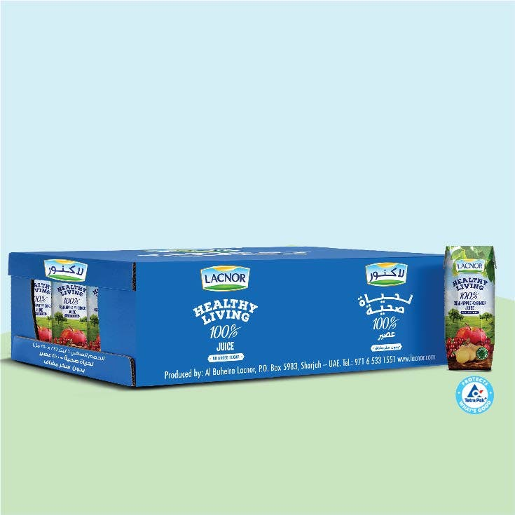 Lacnor Healthy Living Cranberry-Apple- Ginger 250ml - Carton of 24